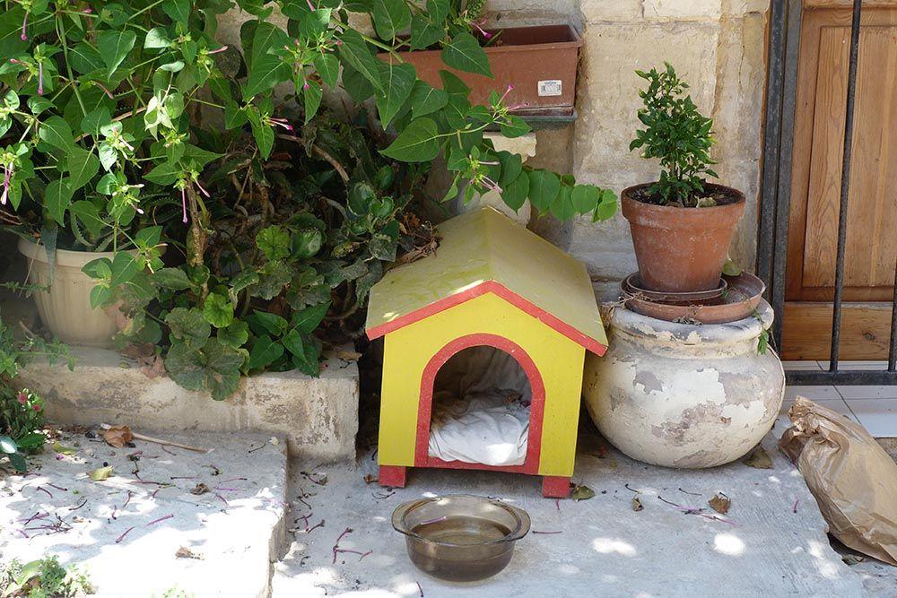 malte maisons pour chat