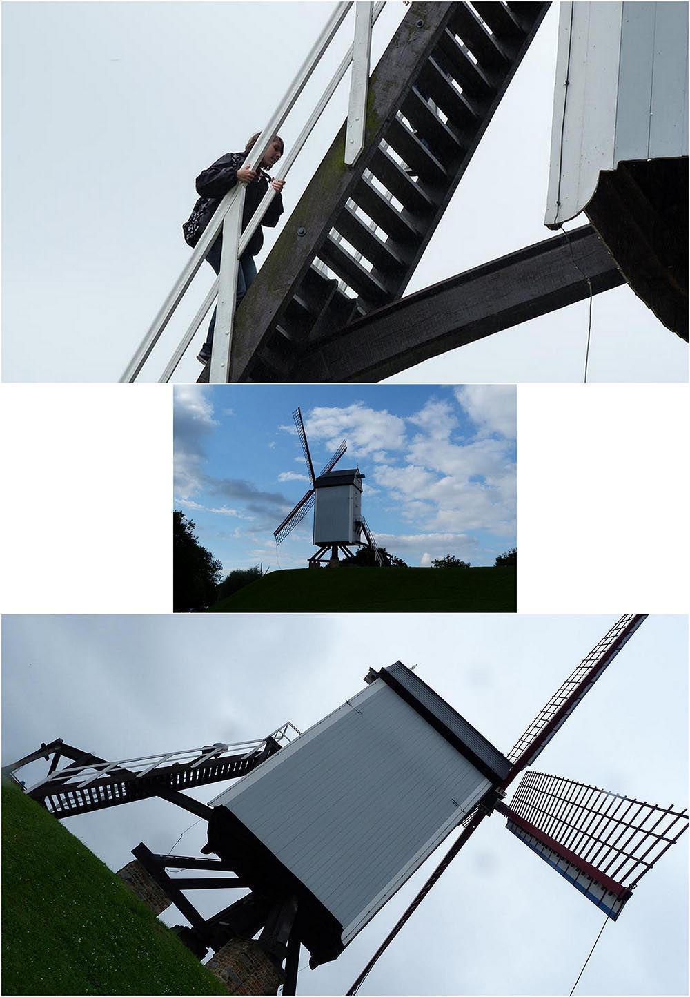 moulins bruges