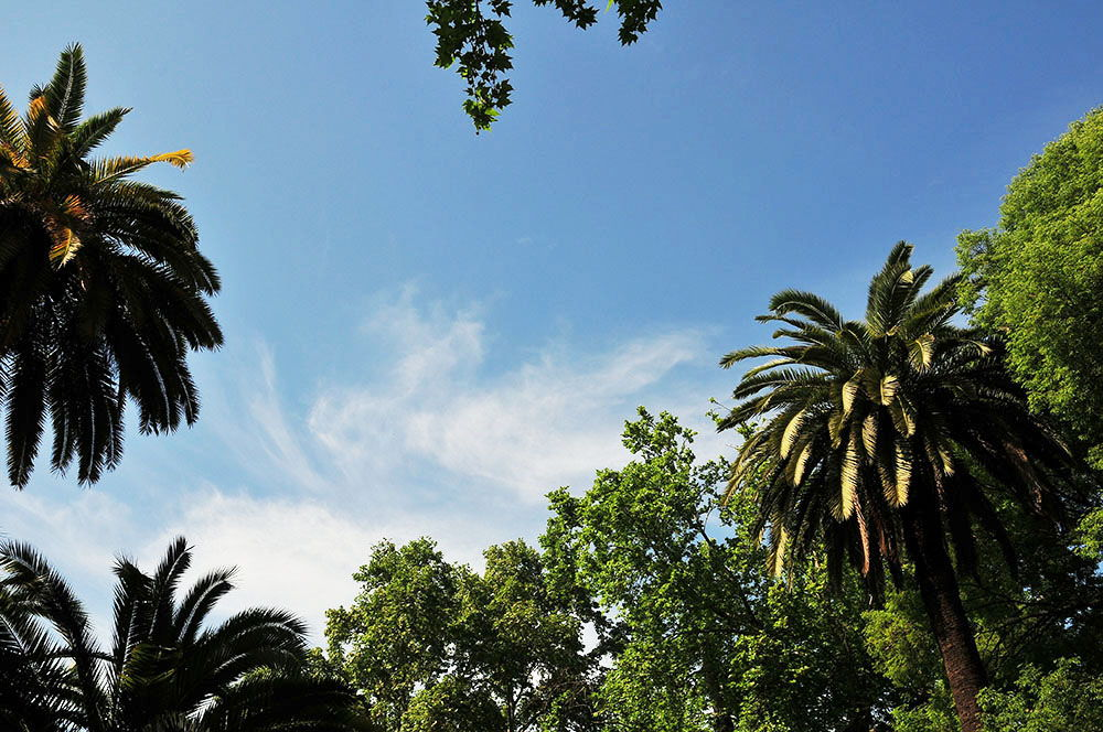 parc de María Luisa  séville