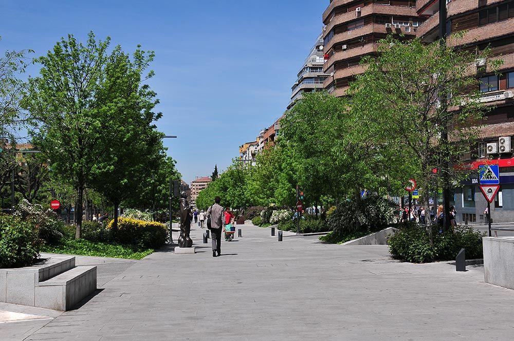 Avenida de la Constitución Grenade