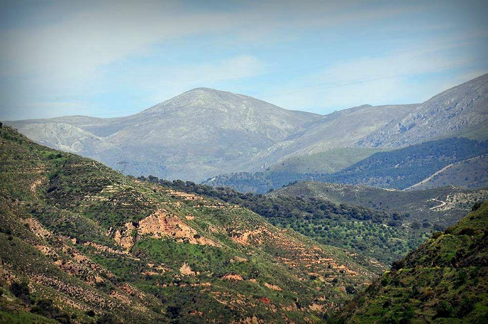 panorama Grenade depuis le mirador San Nicolas