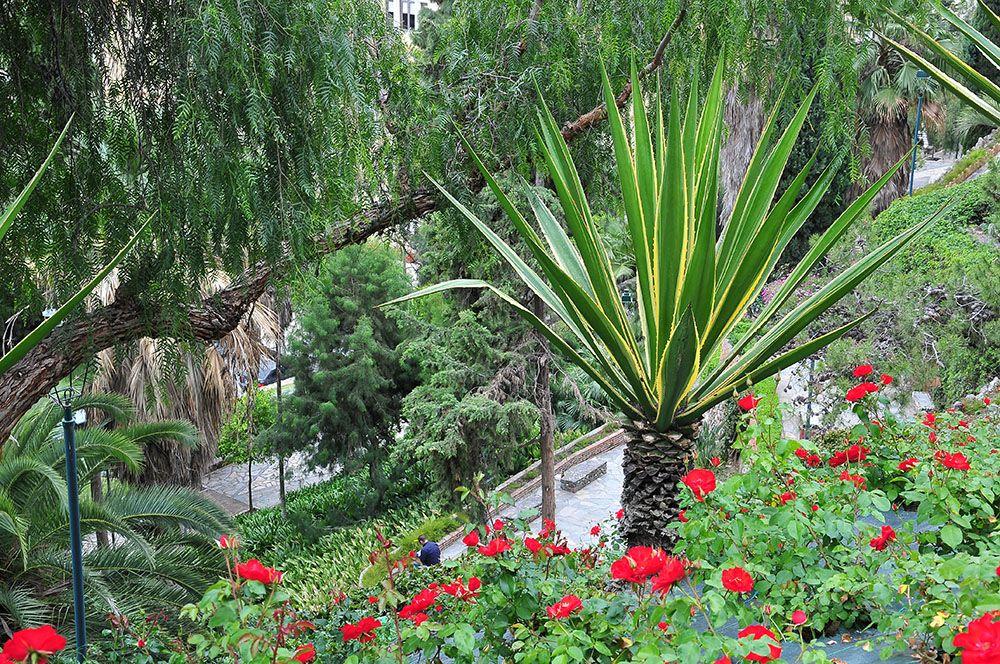 Promenade fleurie et engagée, qui doit être très agréable les jours de chaleur...