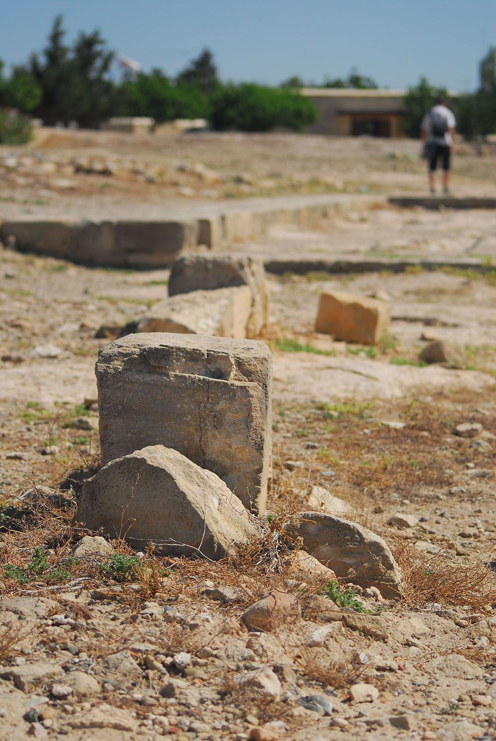 sanctuaire aphrodite paphos chypre