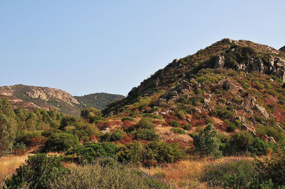 nature et montagne cagliari