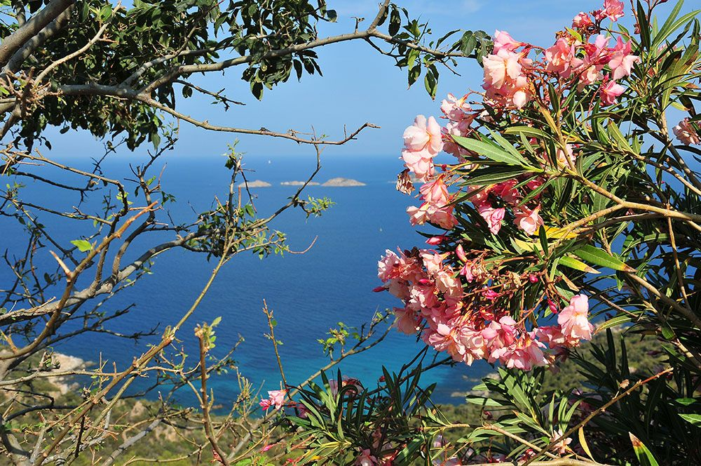 Sardaigne vue sur la mer