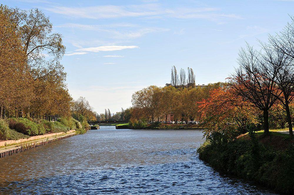 croisière fluviale en Alsace, le Boat (6)