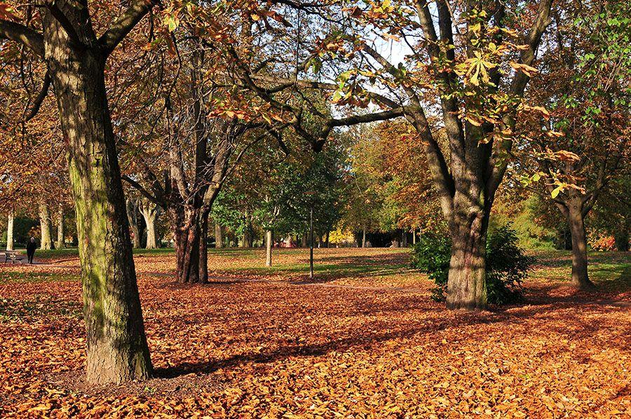 parc de la Citadelle, strasbourg