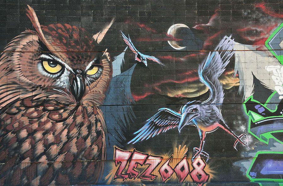 street art, Canaries, Tenerife, zez608