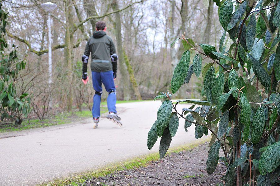 Vondelburg Park, vondelpark, amsterdam