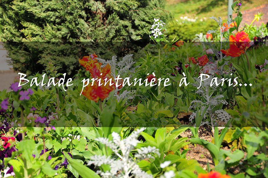 Balade printanière dans le 17e et au parc Monceau