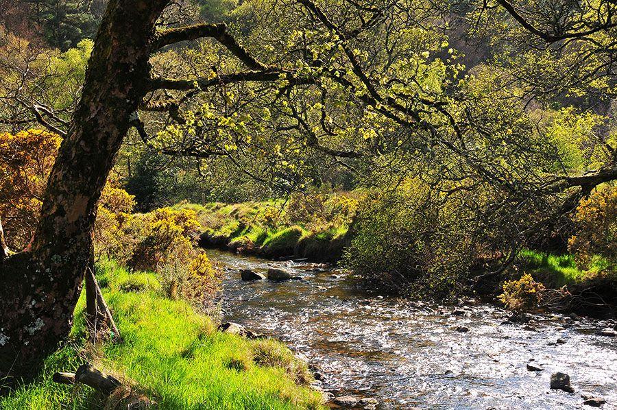 Road-trip en Irlande