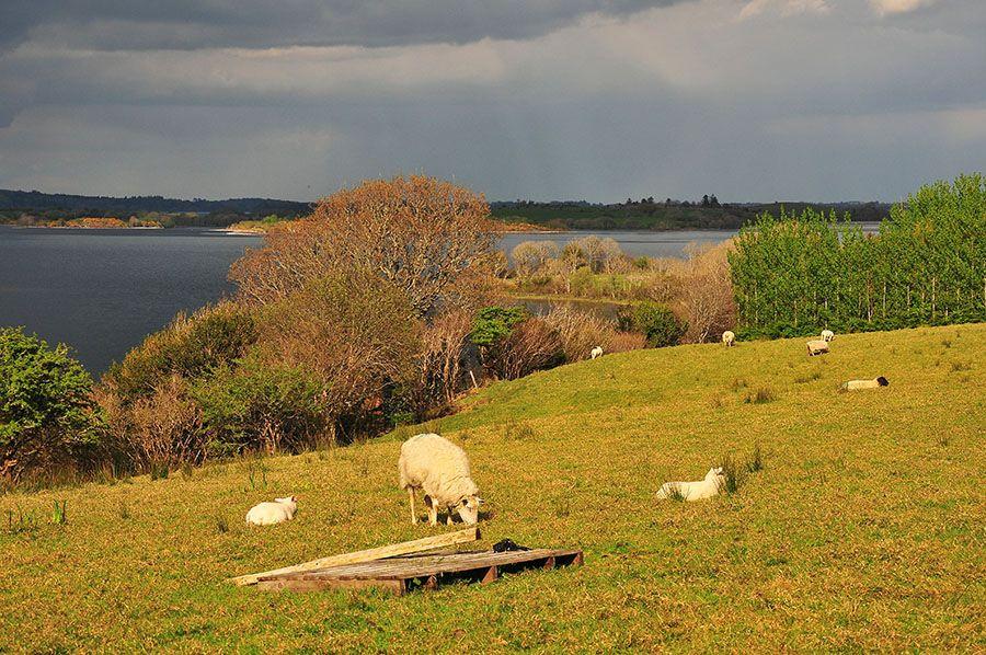 lac connemara irlande