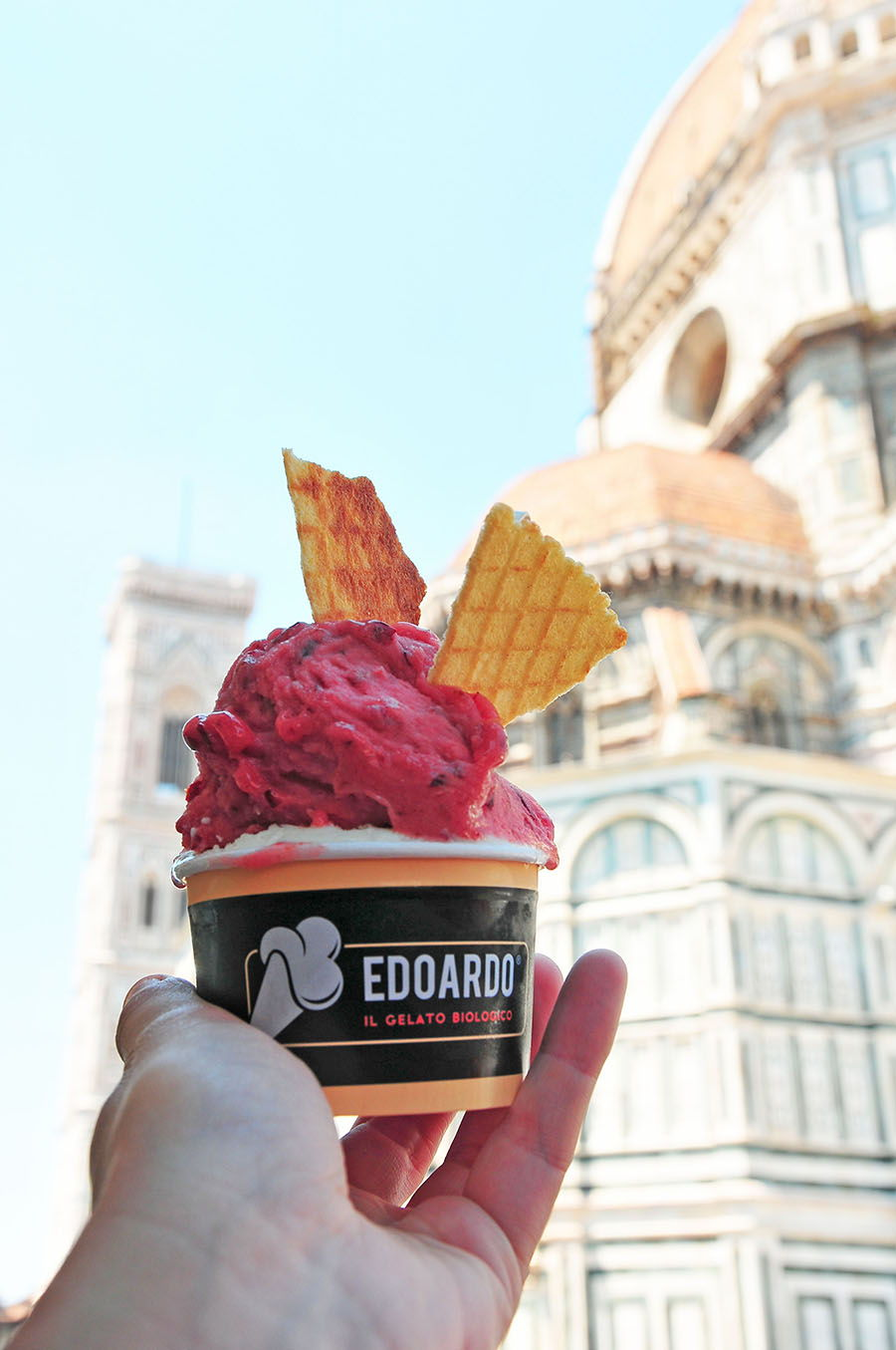 glace florence