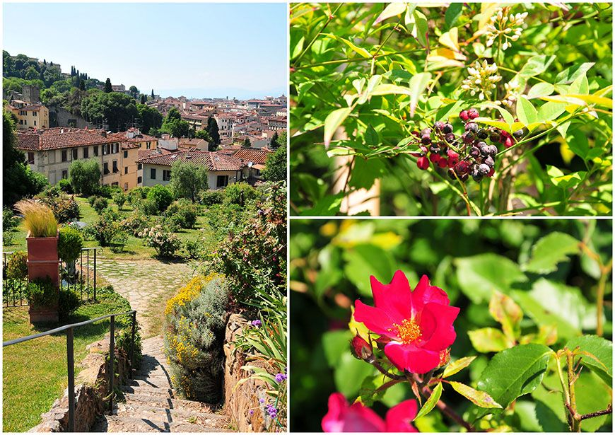 florence jardin des roses