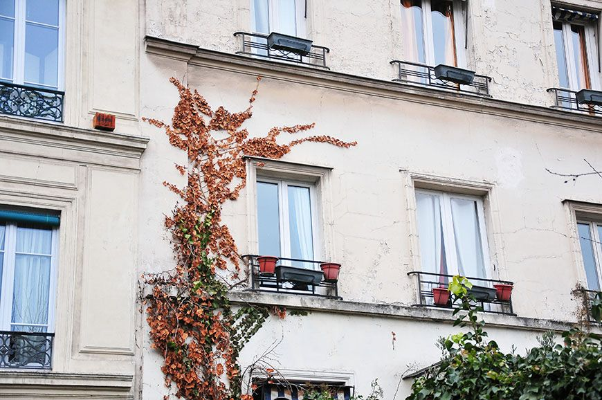cité des Fleurs, Paris
