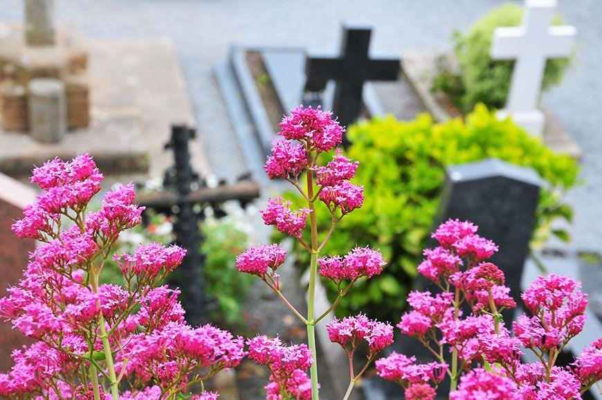 mont saint michel cimetière