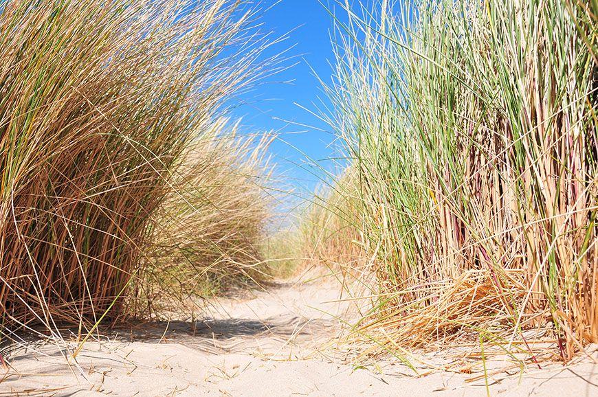 dunes touquet