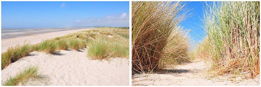 dunes sur la plage du touquet