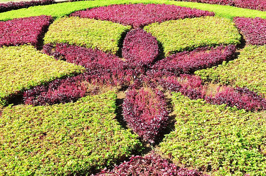 Funchal explosion de couleurs au jardin botaniquemy sweet for Jardin botanique ramadan 2015