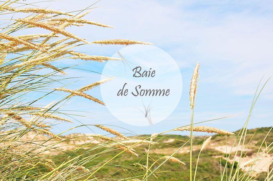 Week-end en Baie de Somme