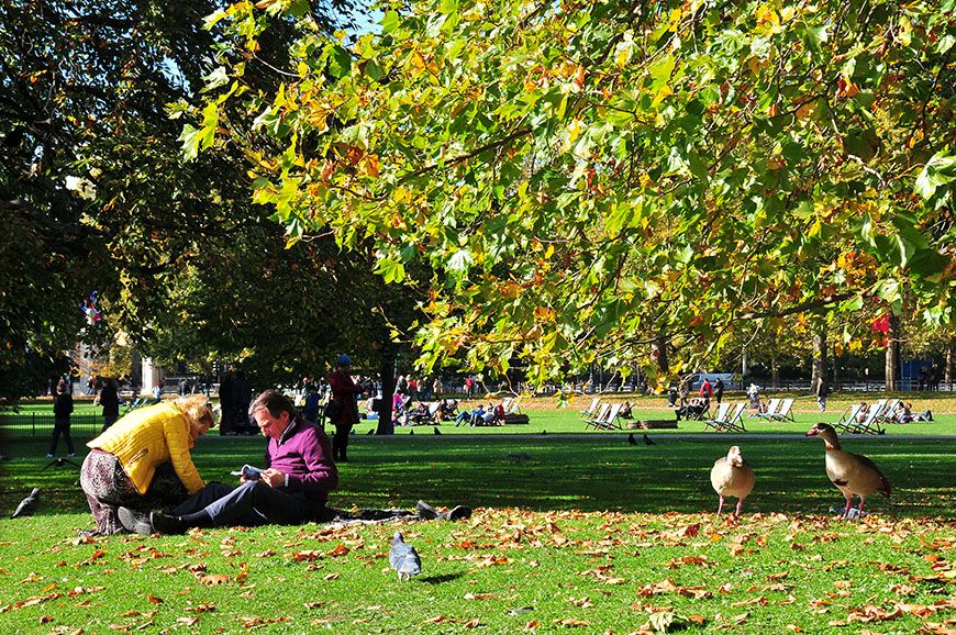 automne à Londres: saint james park