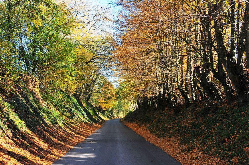 automne en picardie