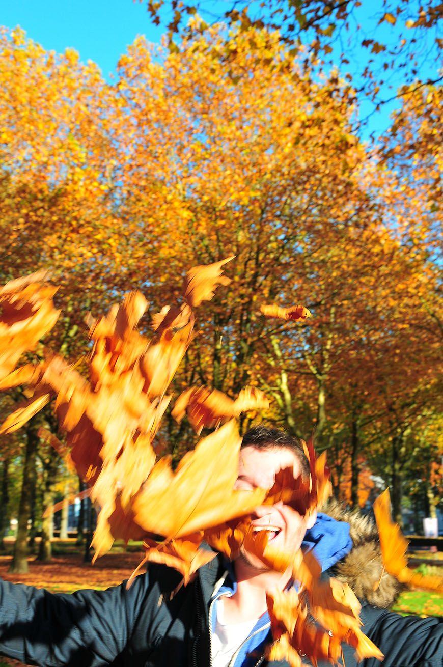 automne en picardie champs elysées saint quentin
