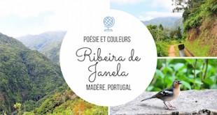 Ribeira da Janela à Madère: un bouquet de poésie et de couleurs