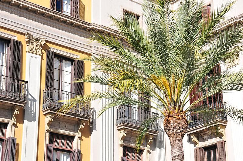 plaça-reial-barcelone (2)