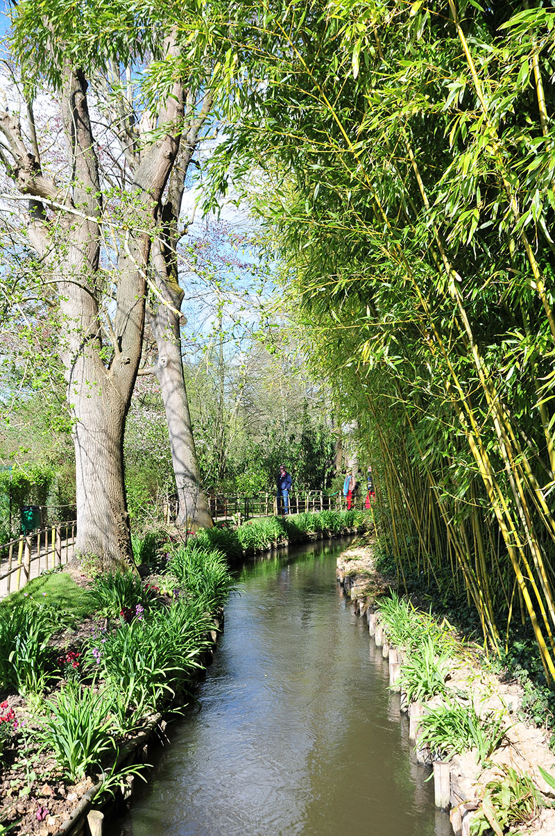 jardins de monet, giverny, printemps