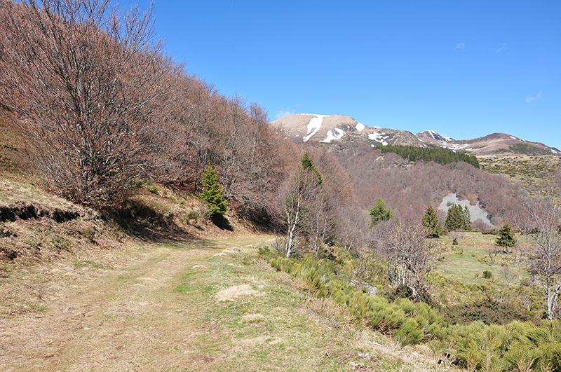 vallée-de-chaudefour-sancy-auvergne (25)