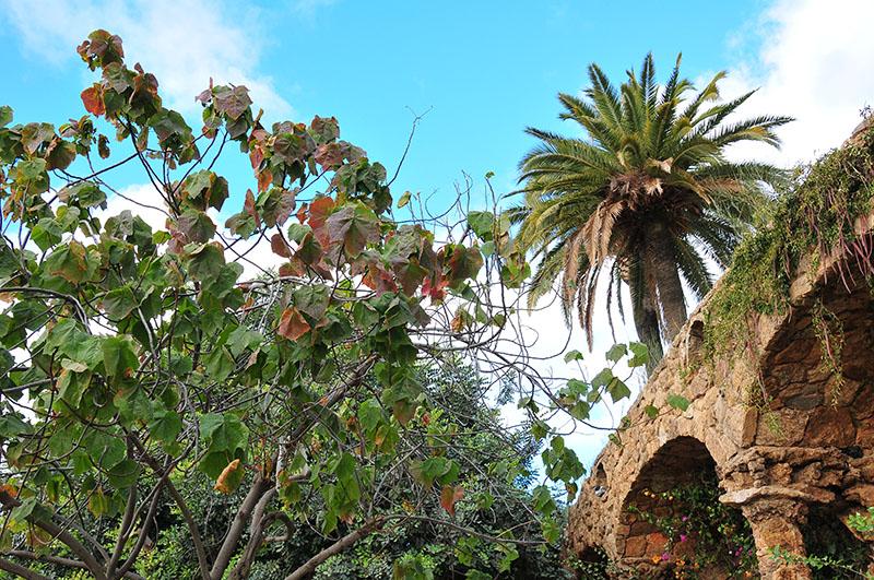 visite du parc guell lors d'un week-end à barcelone, photographies et conseils