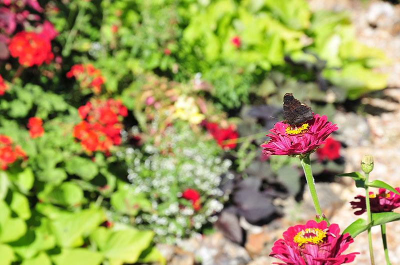 maison picassiette, faïences et jardin, chartres