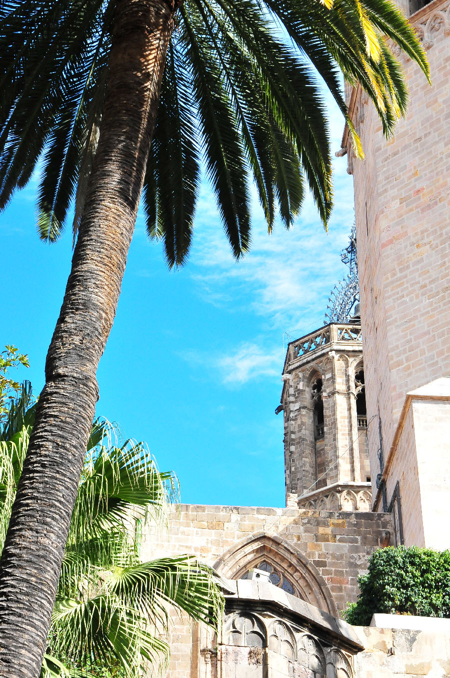 cathédrale, barcelone