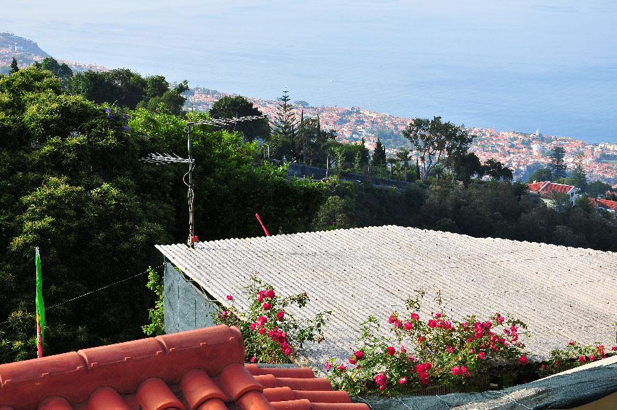 panorama funchal, depuis monte