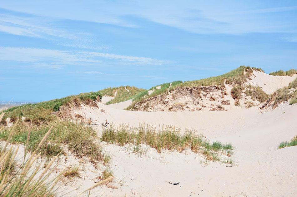 que faire en baie de somme: dunes de fort-mahon