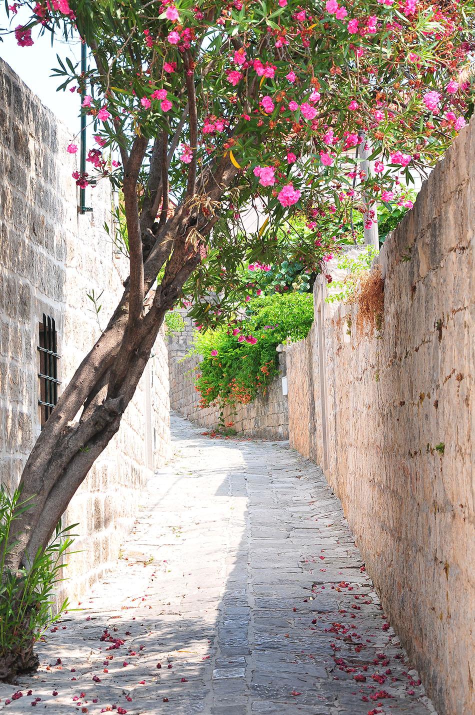 road trip en croatie et étape à cavtat à deux pas de Dubrovnik