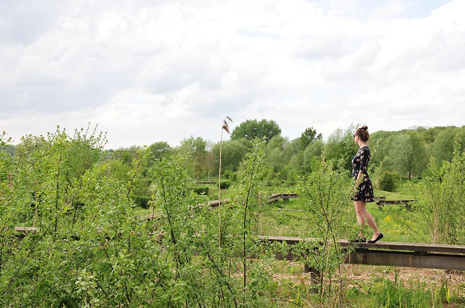 choses à faire dans l'aisne, visite du Familistère de Guise, de Jean-Baptiste André Godin: les jardins