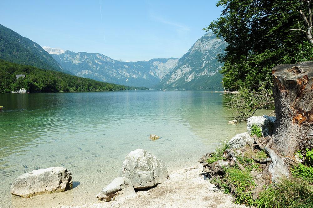 road-trip en slovénie: lac de bohinj
