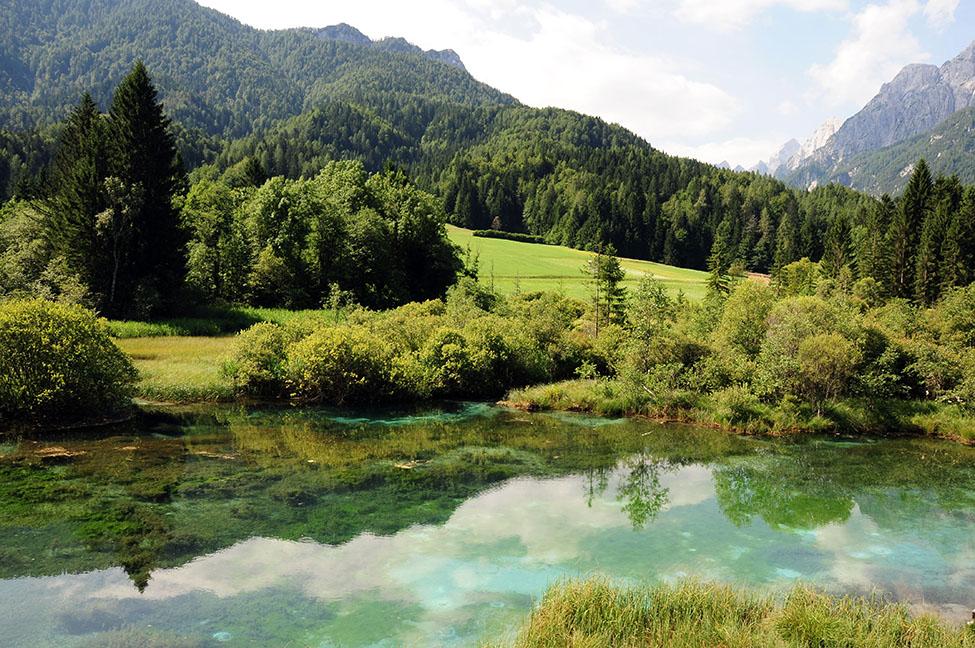 lac réserve zelenci, plus beaux lacs, slovénie