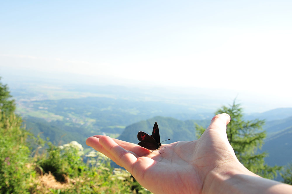 road-trip en slovénie : velika planina