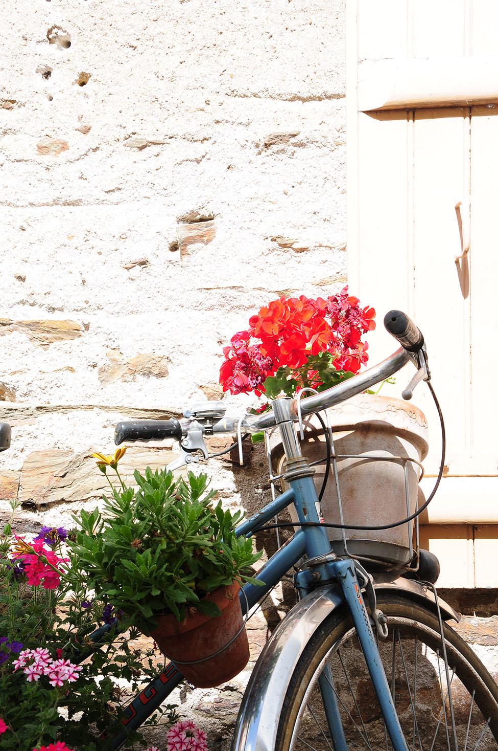 loire à vélo: village de béhuard