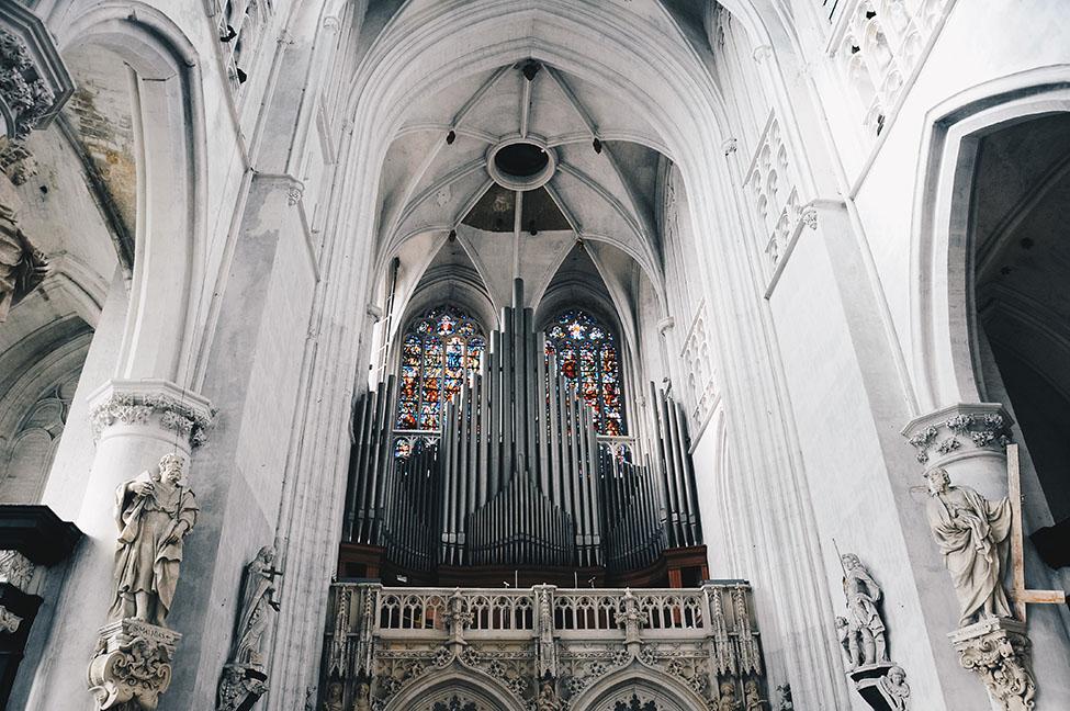 cathédrale malines , orgue