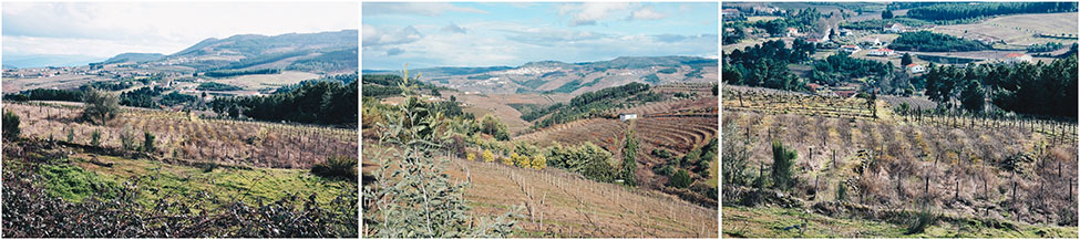 road-trip dans la vallée du douro
