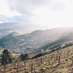 mesao frio, road trip dans la vallée du Douro