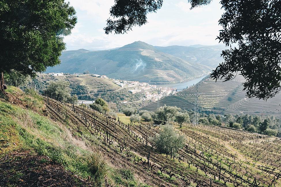 pinhao, road-trip dans la vallée du douro