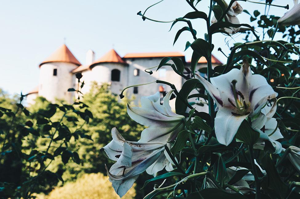 road trip en slovénie: Žužemberk