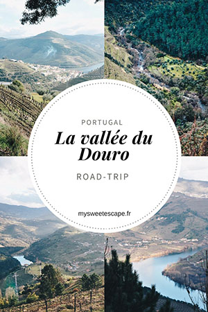 road trip dans la vallée du douro, autour de porto, pinterest