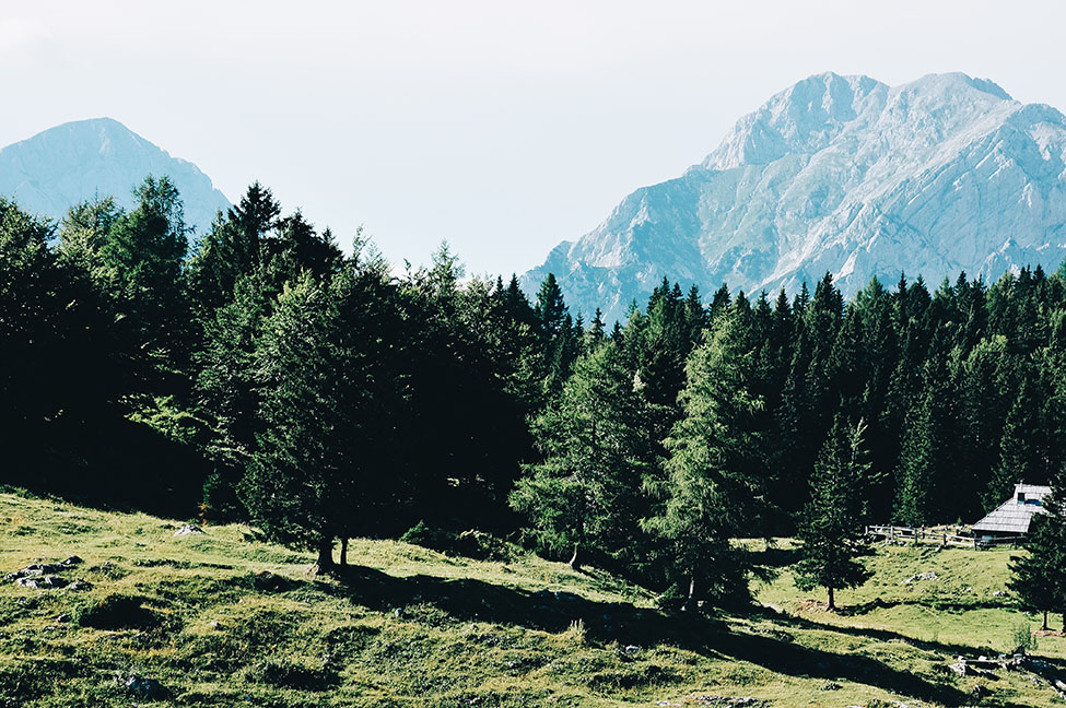 road trip en slovénie, velika planina