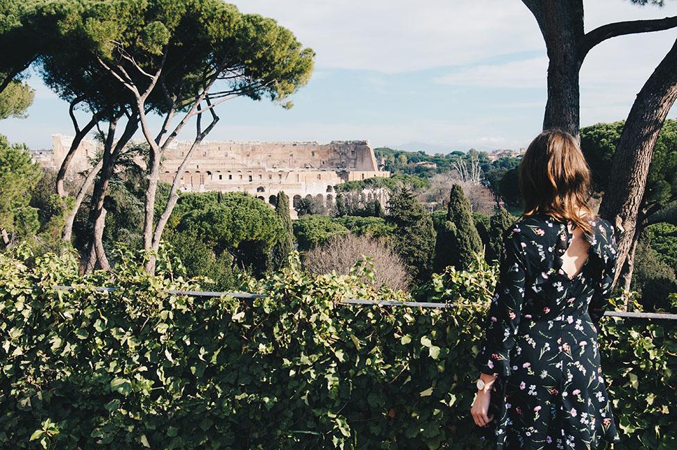 vue sur le colisee depuis le palatin, rome